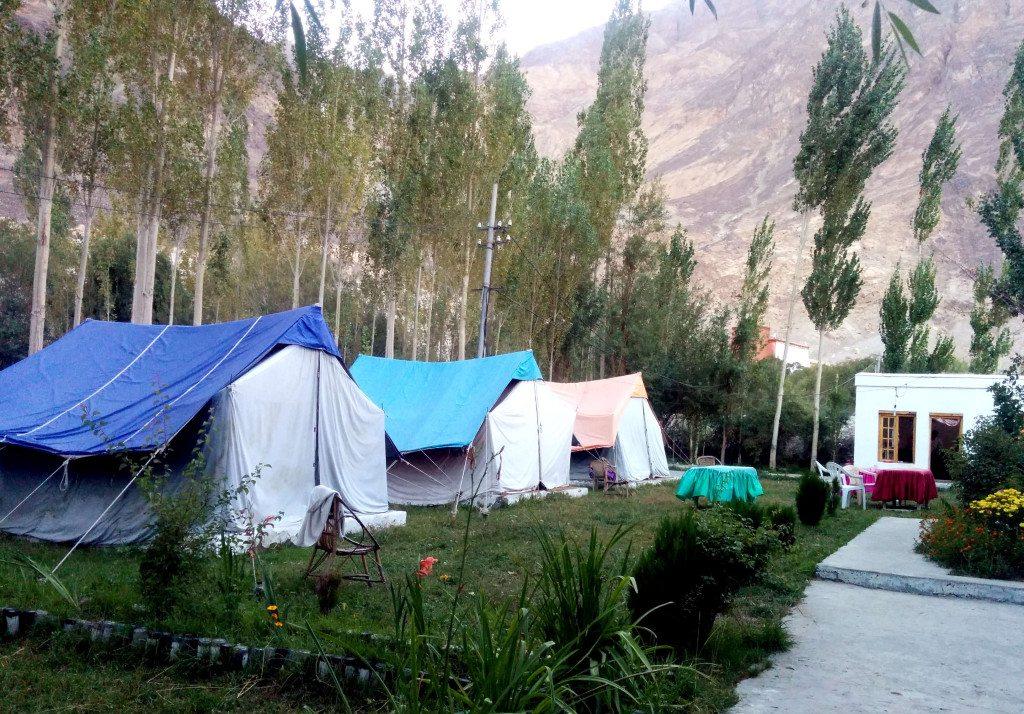 Leh Ladakh road trip: Jamshed Guesthouse, Hunder, Nubra Valley