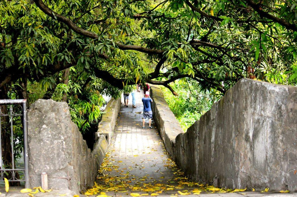 Mango trees covered walkway in Fort Santiago, Intramuros, Manila