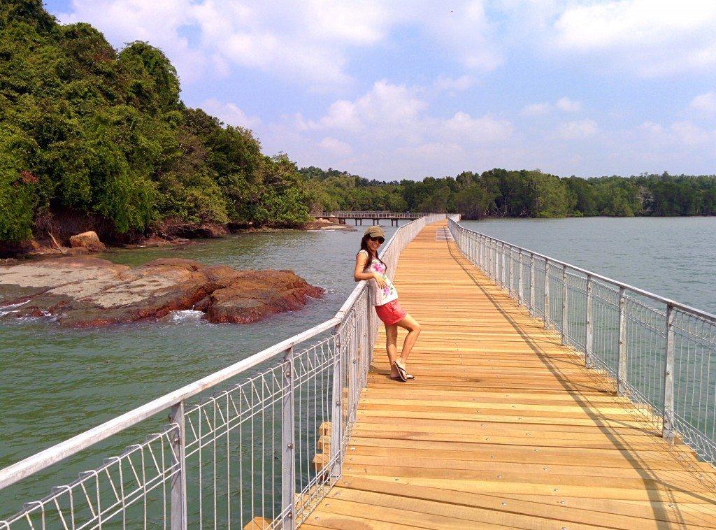 Chek Jawa Wetlands bridge, Pulau Ubin