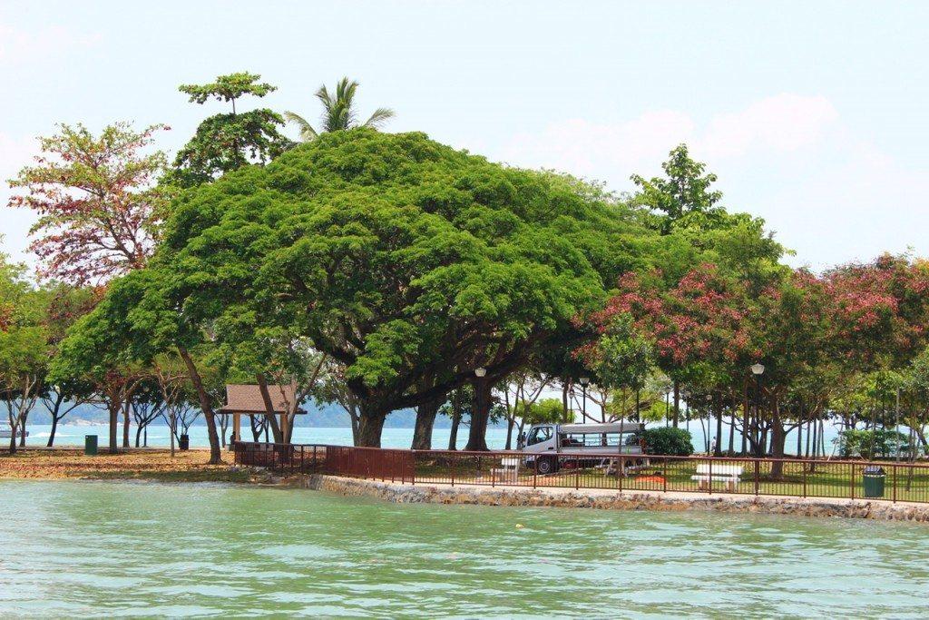 Pulau Ubin Jetty at Changi Terminal - 1