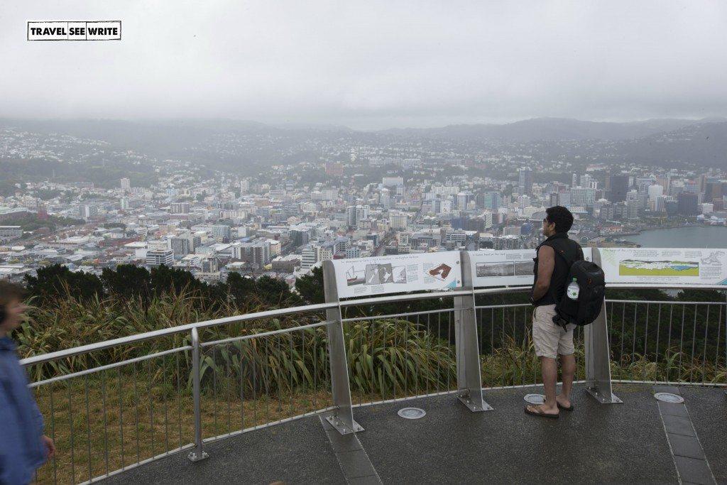 View-of-Wellington-from-mt-victoria-matairangi1