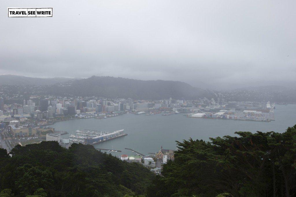 View of Wellington from Mt Victoria Matairangi, New Zealand