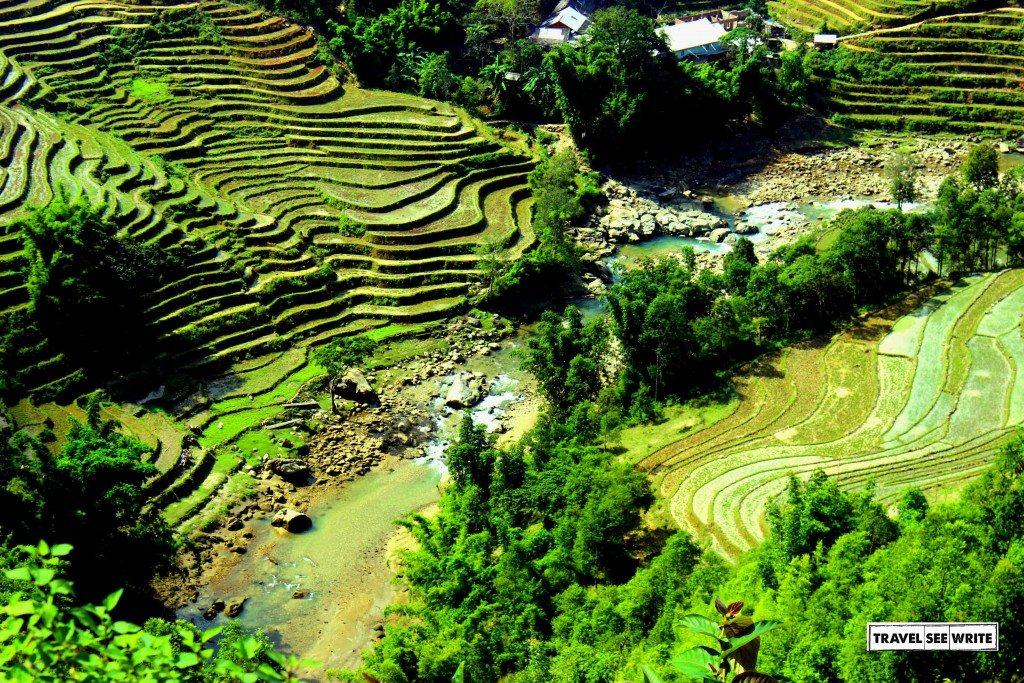 Terrace Farming, Sapa, Vietnam