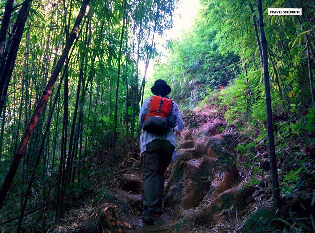 North Western Mountains, Sapa, Vietnam