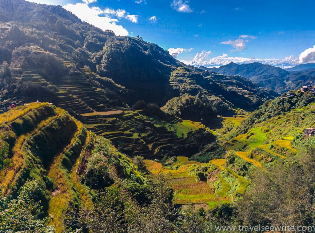The 2000-year-old Banaue Rice Terraces, a UNESCO world heritage site
