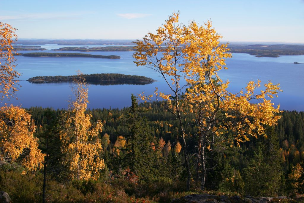 Witness the explosion of colours in the forests and the fells in Autumn, Finland