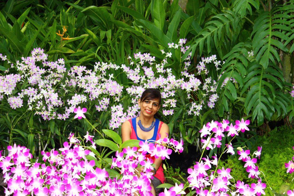 Orchid Garden, Botanic Garden, Singapore