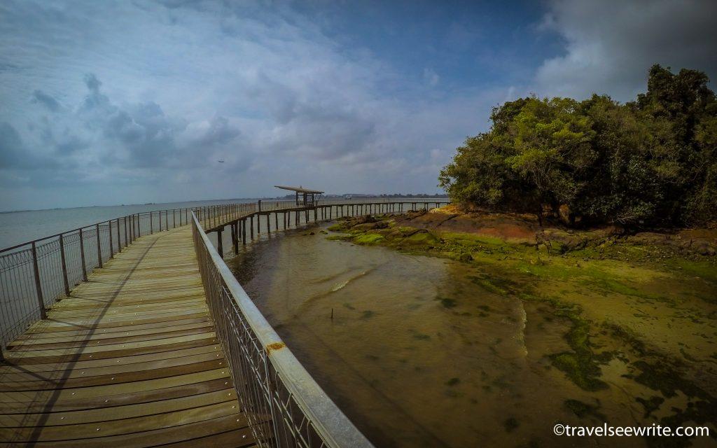 Chek Jawa Wetlands, Pulau Ubin, Singapore