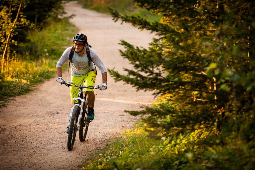 Aspen Vista Trail, Santa Fe National Forest, Rocky Mountains, New Mexico.