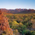 McDowell Sonoran Preserve, Scottsdale