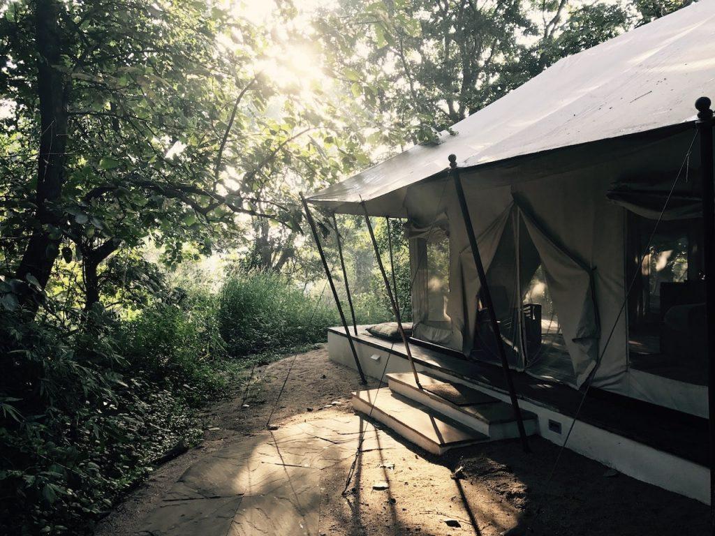 Jamtara Wilderness Camps, Pench National Park, Madhya Pradesh, India