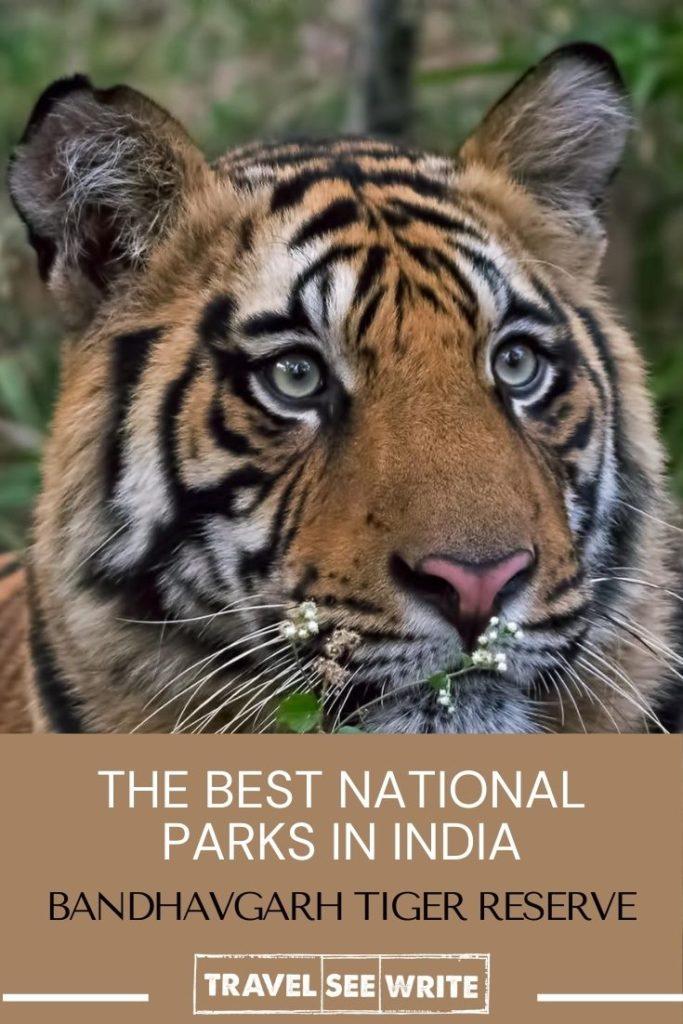 Complete Travel Guide - Bandhavgarh NationalPark