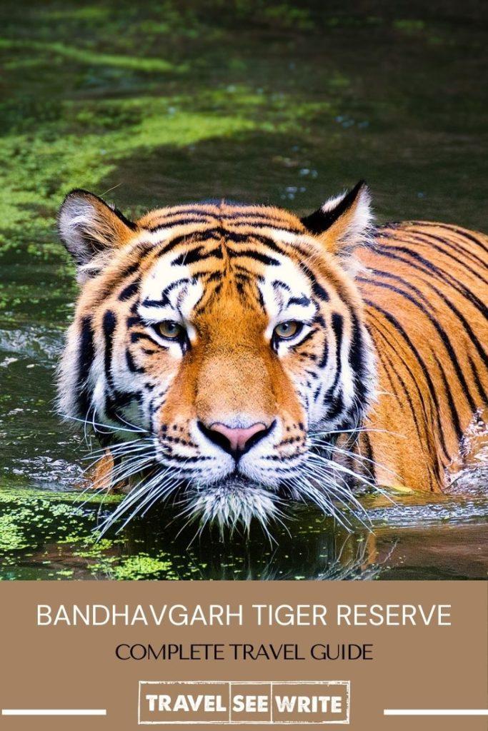 Complete Travel Guide - Bandhavgarh National Park