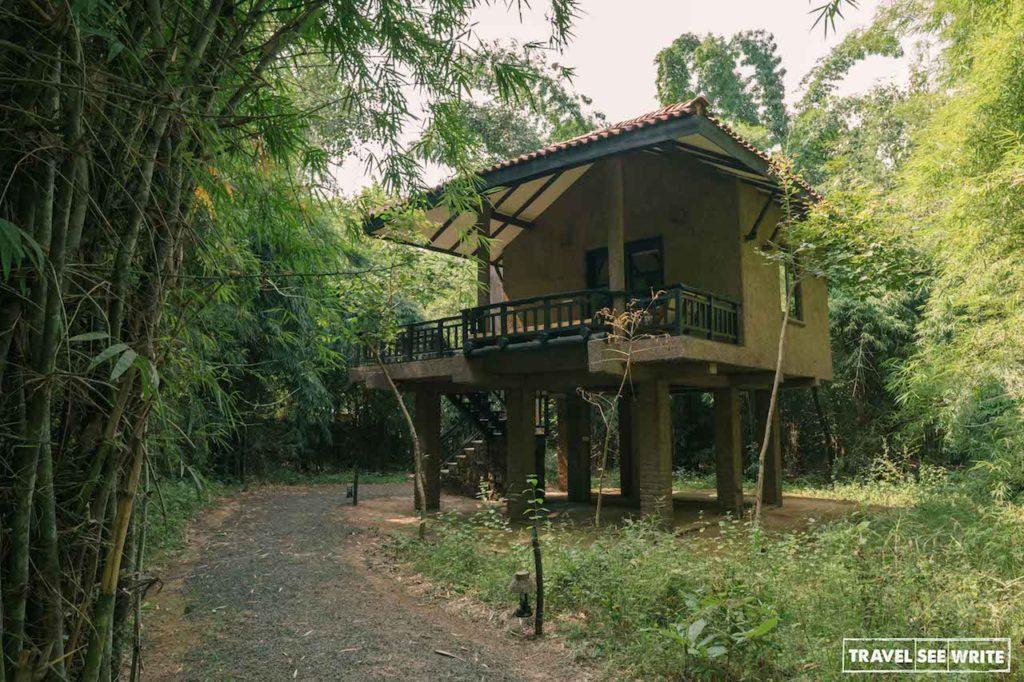 Stilted cottage at Kings lodge, Bandhavgarh