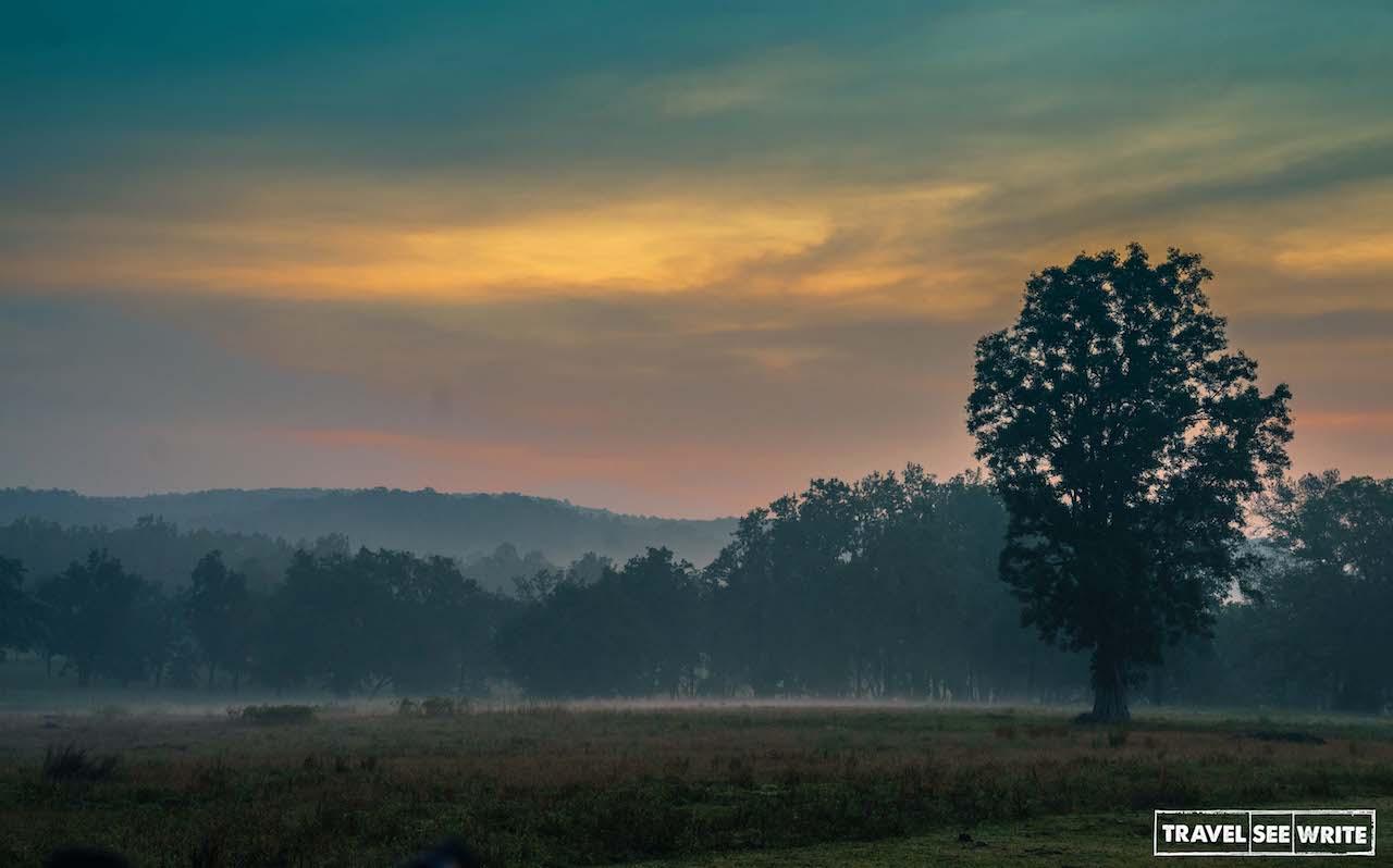 Sunrise at Kanha Tiger Reserve, Madhya Pradesh, MP